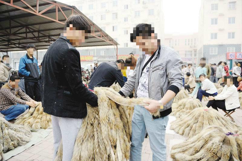 衡水大营裘皮原材料市场